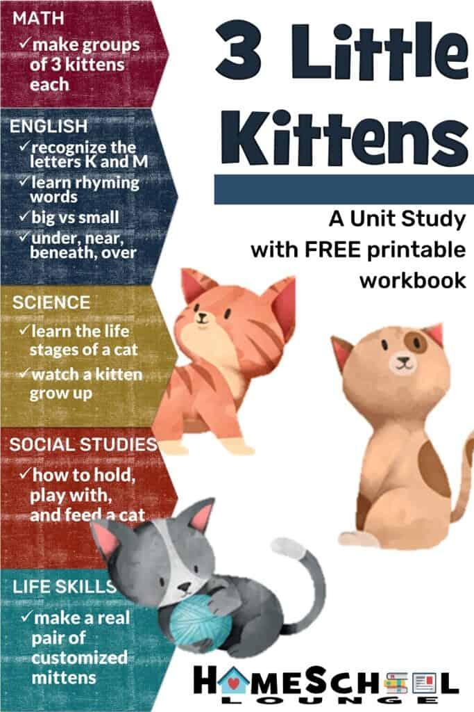Three Little Kittens 2 1000X1500